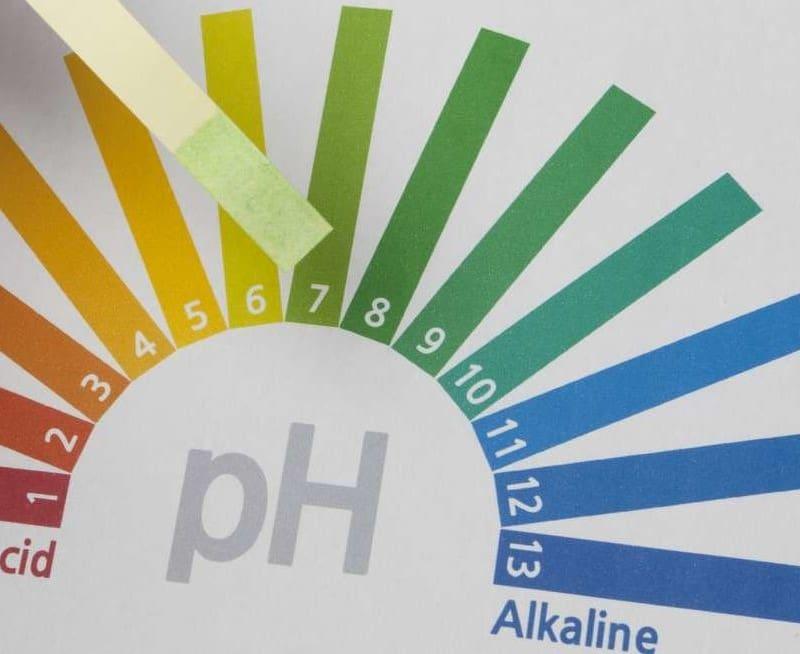 Enagic Kangen Water helps in alkalizing the body's pH level