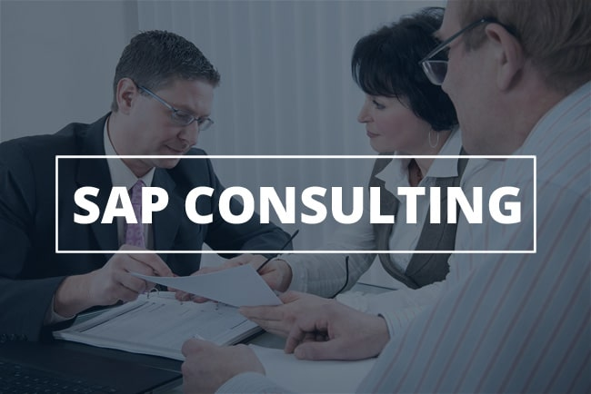 major types observed in SAP consultants