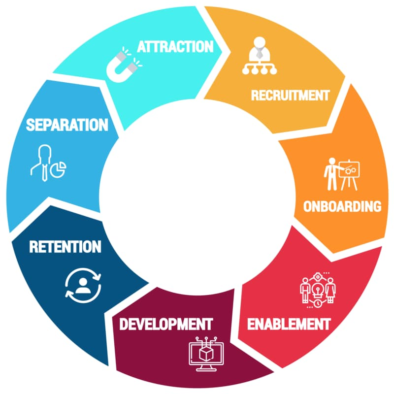A Great HR Professionals Life Cycle Experience