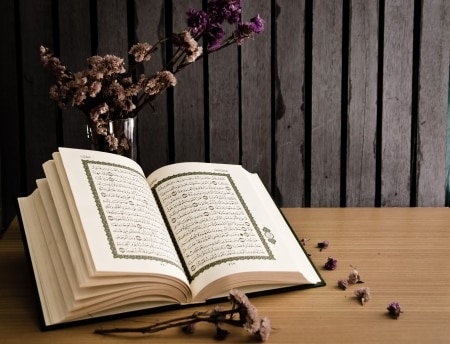 Learn Quran for took a straight passage