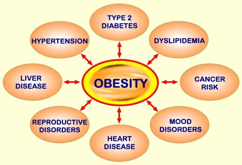 Many Diseases Caused By Obesity