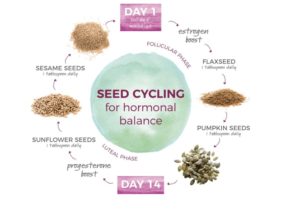 Seed Cycling Help Balance Hormones