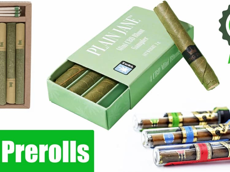6 Interesting facts About Pre Roll Packaging