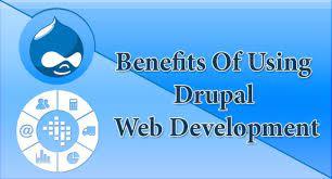 Advantages Of Using Drupal Web Development Company