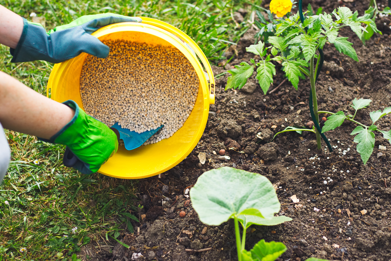 Knowledge of 4 different types of Fertilizers