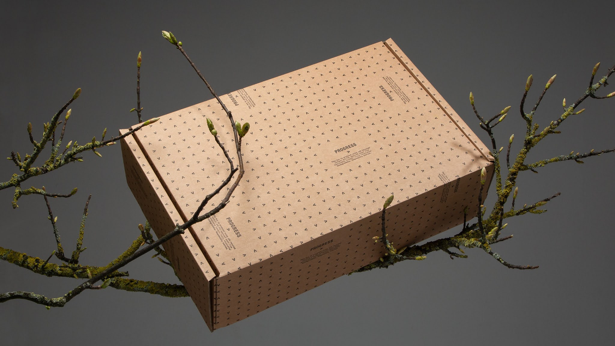 Why Eco-Friendly Packaging Is Getting Important? 6-Fact